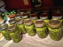 homegrown veggies, homegrown, no pesticides
