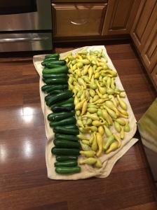 Homegrown vegetables, no pesticides
